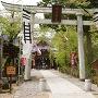 本丸跡(懐古神社)