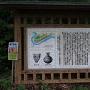 矢崎遺跡の看板