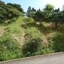 畝状竪堀(南側斜面)