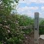 八幡山頂上です。