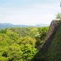 新緑と三の丸高石垣
