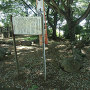 本丸石垣と石畳