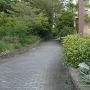 三の丸濠跡の遊歩道