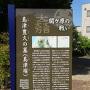 島津豊久の墓案内板