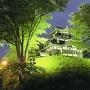 夜の三重櫓
