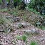 京極丸の石段と石垣