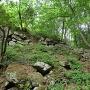 山王丸虎口の崩れ落ちた石垣