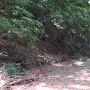 こんな堀が名古屋の市街地にあります