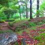 隣接の下茶屋公園に残る土塁跡