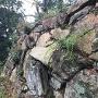 崩れそうな石垣