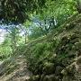 本丸北側の苔むした石垣