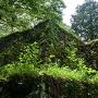 本丸南東の石垣