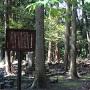 西高木家墓石群
