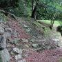 本丸の土塁と石段