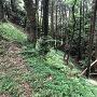 空堀(遠見城南側)