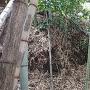 クモの巣だらけの土塁