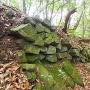 柱状節理の石垣①
