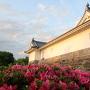 夕陽に映える東御門櫓とサツキ