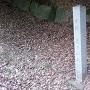 高良山神籠石 城趾碑と列石