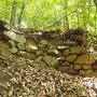 本丸と扇の丸間付近の石垣