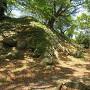 本丸石垣(本丸大手北側)