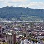 城跡から望む高島城と諏訪湖
