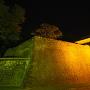 平御櫓夜景