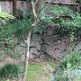 吐月峰柴屋寺境内の石垣