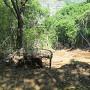 馬屋跡の土砂崩れ