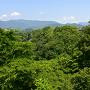 上野原城跡遠景