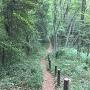 山の神曲輪への道