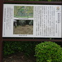 軽海西城跡碑と案内板
