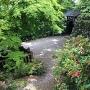 ツツジと山門と石垣