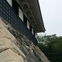 色々な年代の石が使われてそうな土台石垣
