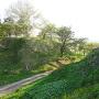 猪苗代城-鶴峰城間の大堀切