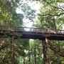 本丸と中の丸をつなぐ木橋