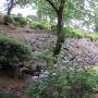 関東大震災で滑り落ちた石垣