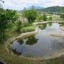 復元された東池