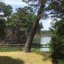 平川濠と本丸北面の石垣