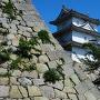 天守台石垣と坤櫓