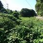 堀と台所丸跡(正面奥)