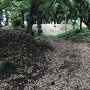 屈曲する空堀と土塁(初夏バージョン)