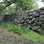 月見櫓跡の北に続く、石垣の西面
