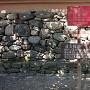 秋月城 稽古館案内板と石垣