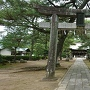 本丸跡(篠山神社)