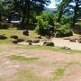 復元された庭園跡