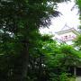 6月の木々で隅櫓はよく見えない