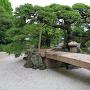 黒松と切石橋(表御殿庭園 枯山水庭)