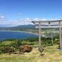 頂上の神社からの眺め