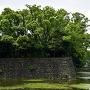 大手濠と平川門